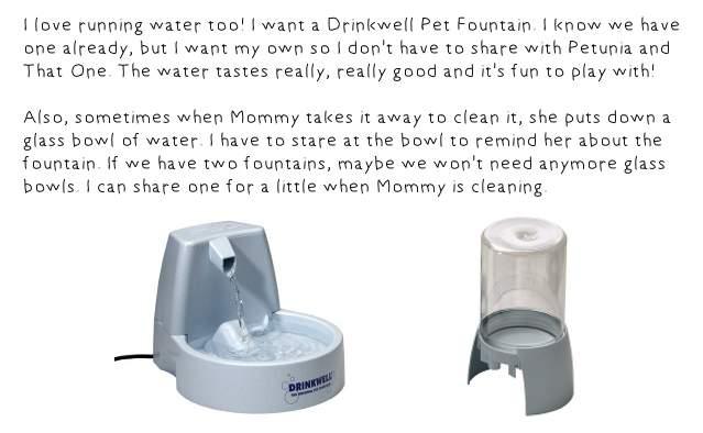 Drinkwell Fountain