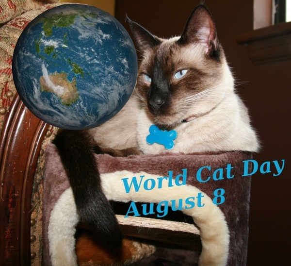 WorldCatDay600