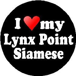 I Love My Lynx Point Magnet