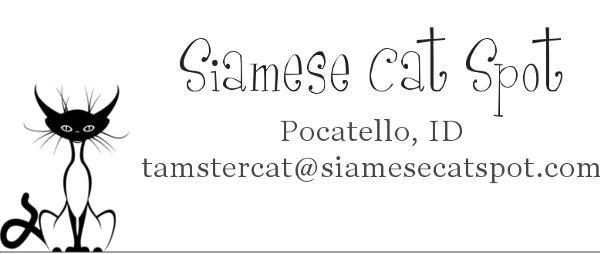 Contact Siamese Cat Spot