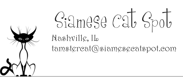 Contact Us | Siamese Cat Spot